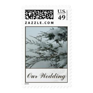 Winter Wedding Snow Evergreen Tree Postage