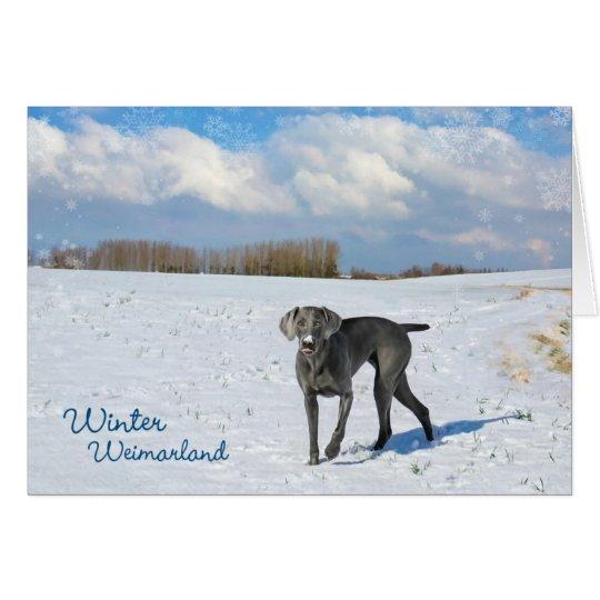 Winter Weimarland Card