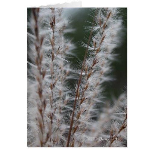 Winter Wheat 2 Greeting Card