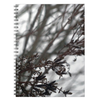 Winter Whimsy Note Book