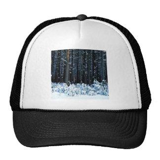Winter White Pine Trees Pocono Mountains Hat