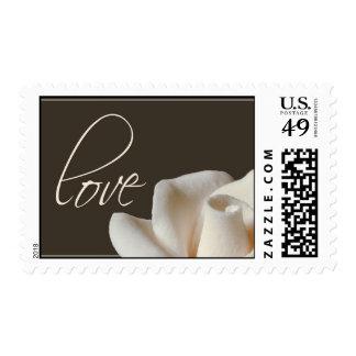 winter white rose postage