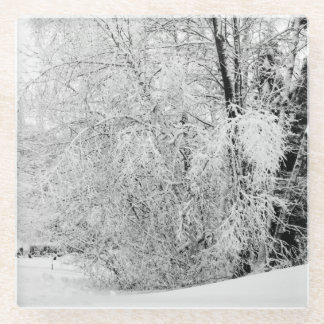 Winter Whites Glass Coaster