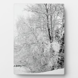Winter Whites Plaque