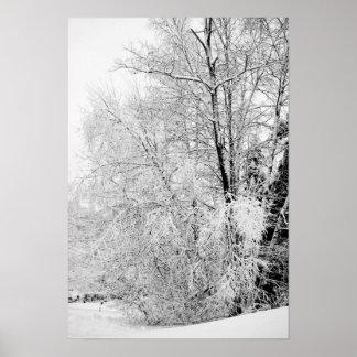 Winter Whites Poster