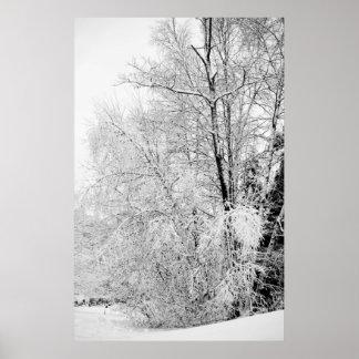 Winter Whites Print