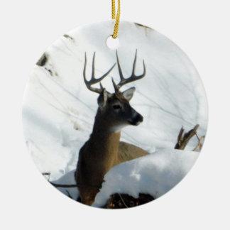 Winter Whitetail Deer Ornament