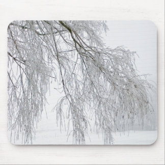 winter willow mouse pad