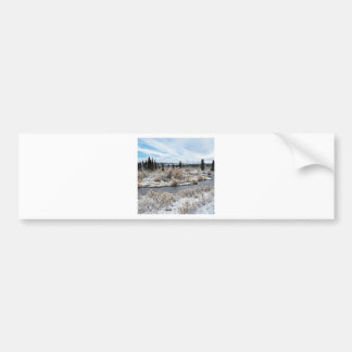 Winter Willow Shrub Spruce Trees Savage River Bumper Sticker