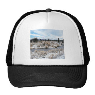 Winter Willow Shrub Spruce Trees Savage River Trucker Hat