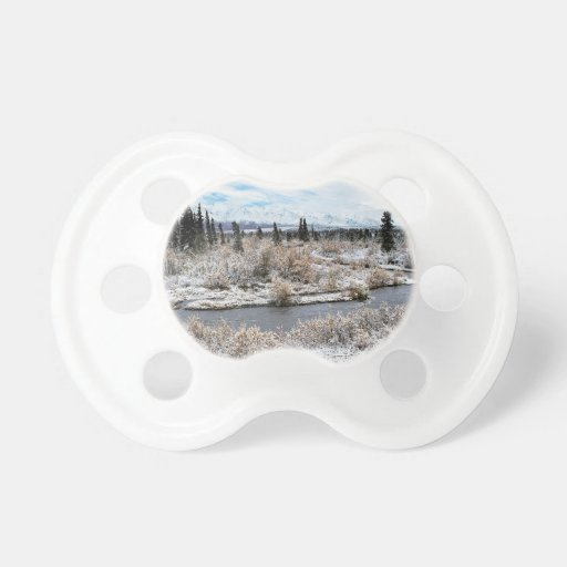 Winter Willow Shrub Spruce Trees Savage River Pacifiers