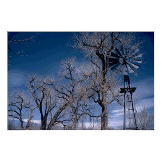Winter Windmill Poster