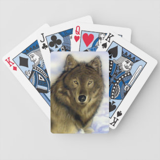 Winter Wolf Playing Cards