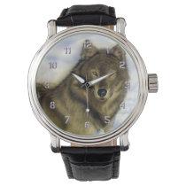 Winter Wolf Wrist Watch
