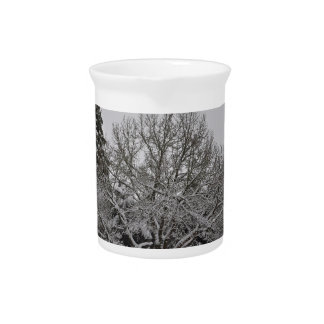 Winter wonder country drink pitcher