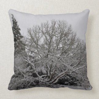 Winter wonder country pillow