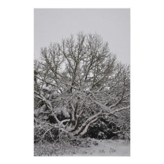 Winter wonder country stationery