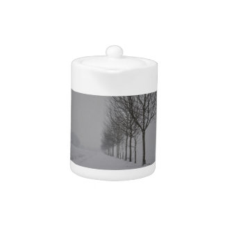 Winter wonder country teapot