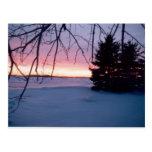 Winter Wonder Postcard