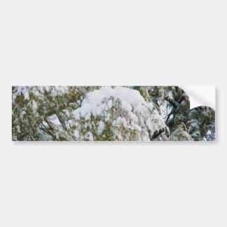 Winter wonderland bumper stickers