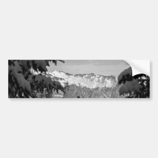Winter Wonderland Bumper Sticker