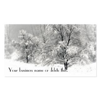Winter Wonderland Business Card