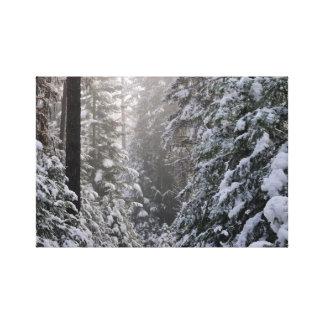 Winter Wonderland Canvas Wrap