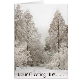 Winter Wonderland Cards Seasons Greetings Cards