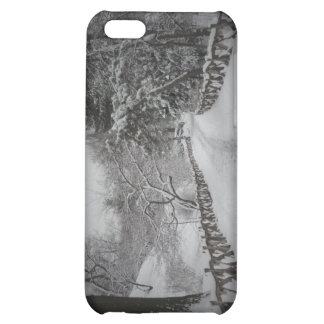 Winter Wonderland, Central Park, New York City Cover For iPhone 5C