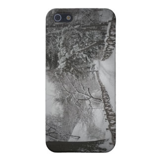 Winter Wonderland, Central Park, New York City Case For iPhone 5
