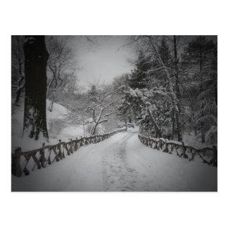 Winter Wonderland, Central Park, New York City Postcard