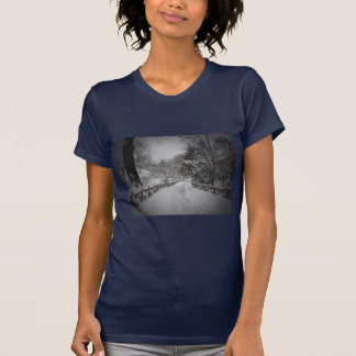 Winter Wonderland, Central Park, New York City T-Shirt