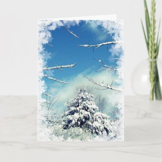 Winter Wonderland Christmas Holiday Card