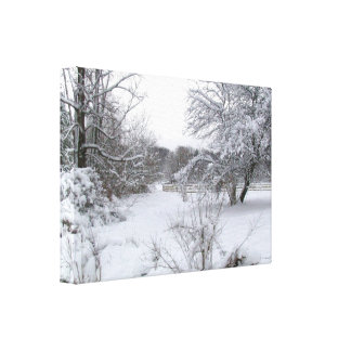 Winter Wonderland Gallery Wrapped Canvas