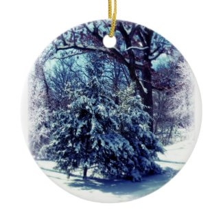 Winter Wonderland Keepsake Ornament