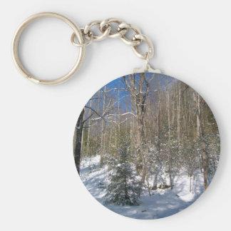 Winter Wonderland Key Chains
