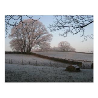 Winter Wonderland - Lazonby Cumbria Postcard