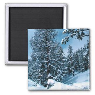 Winter Wonderland Fridge Magnet