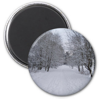 Winter wonderland refrigerator magnet