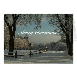 Winter Wonderland, Merry Christmas! Card