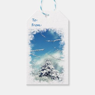 Winter Wonderland Pack of Gift Tags