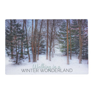 Winter Wonderland Paper Placemat
