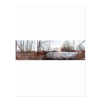Winter Wonderland Petrie Island Ottawa Postcard