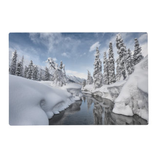 Winter Wonderland Placemat