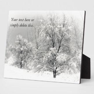 Winter Wonderland Plaque