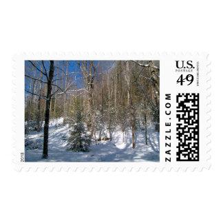 Winter Wonderland Postage Stamps