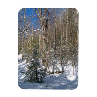 Winter Wonderland Flexible Magnet