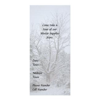 Winter Wonderland Rack Card