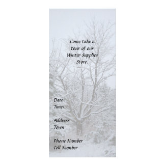 Winter Wonderland Custom Rack Card