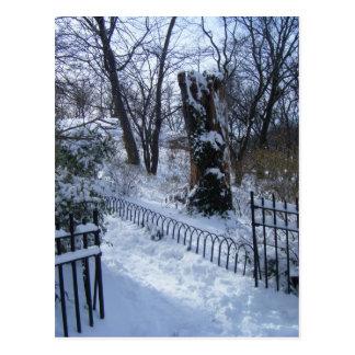 Winter Wonderland (Riverside Park, New York City) Postcard